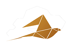 demobird - Videoberatung und Onlineberatung neu erfunden